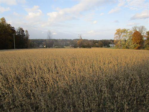 + 10 Acres All Row Crop : Lavinia : Carroll County : Tennessee