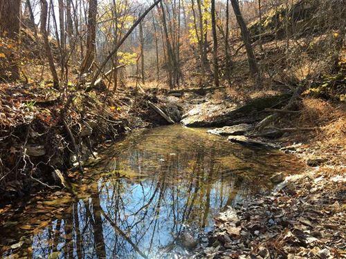 The Buck Run 215 : Eureka Springs : Carroll County : Arkansas