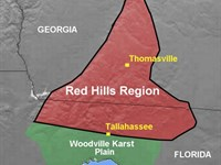 Signature Red Hills Property : Thomasville : Thomas County : Georgia