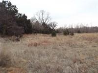 Cattle Pasture & Recreational Land : Waynoka : Oklahoma County : Oklahoma