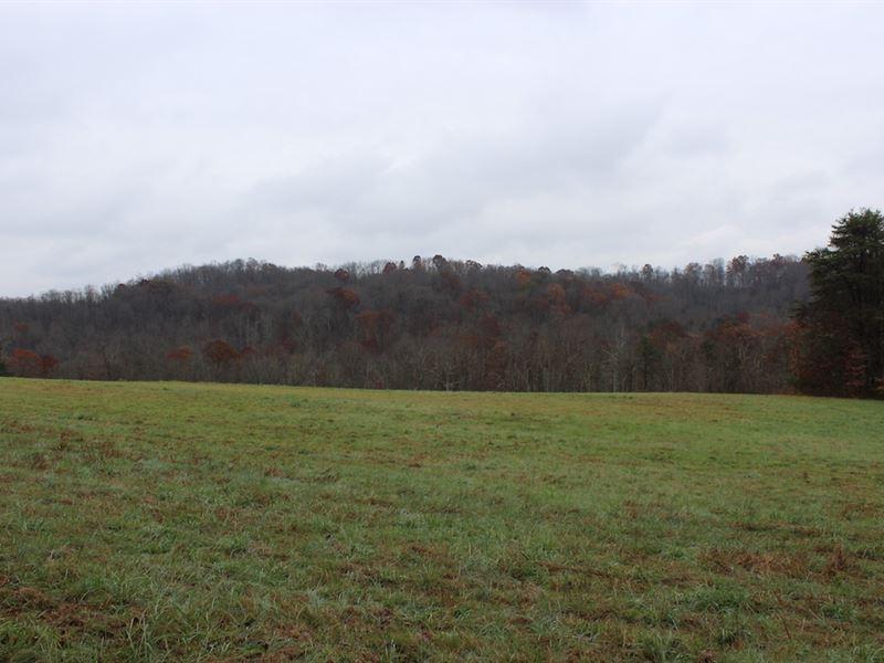 Old Camp Rd - 28 Acres : New Matamoras : Washington County : Ohio
