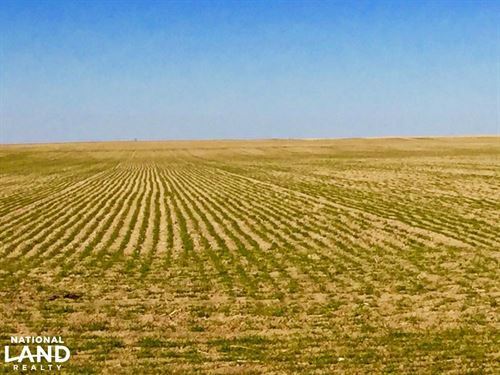 Farm Ground For Sale - Cheyenne Cou : Cheyenne Wells : Cheyenne County : Colorado