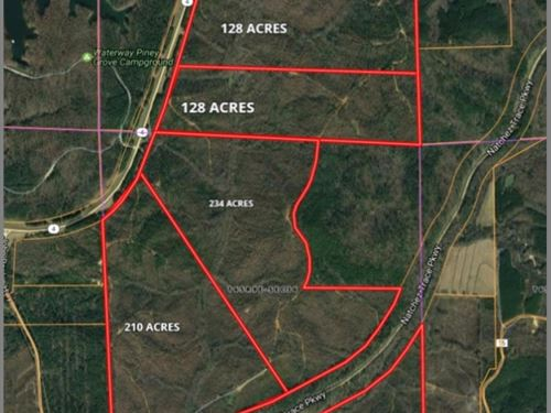 751 Acres In Tishomingo County : Iuka : Tishomingo County : Mississippi
