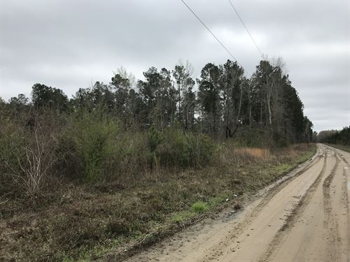 Toney Bay 12 : Holly Hill : Orangeburg County : South Carolina