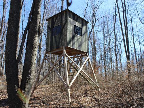 Beagle Club Rd - 25 Acres : Scio : Harrison County : Ohio