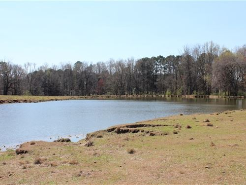 59 Acres - Chesterfield County, Sc : Chesterfield : South Carolina