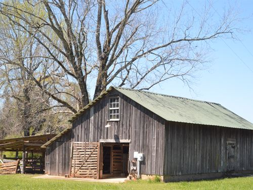 133 Acres Of Farm And Timberland : Jackson : Clarke County : Alabama