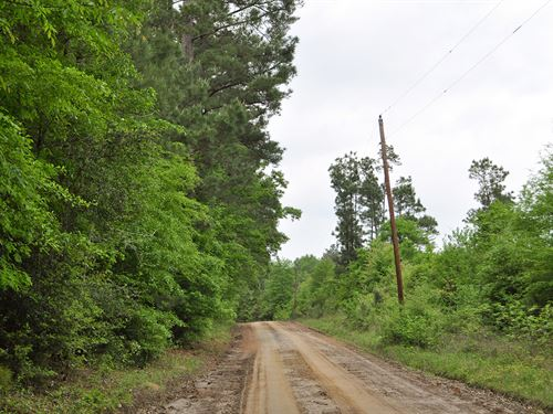 97.1 Ac Cr 364 Weaver Bend Rd : Zavalla : Angelina County : Texas