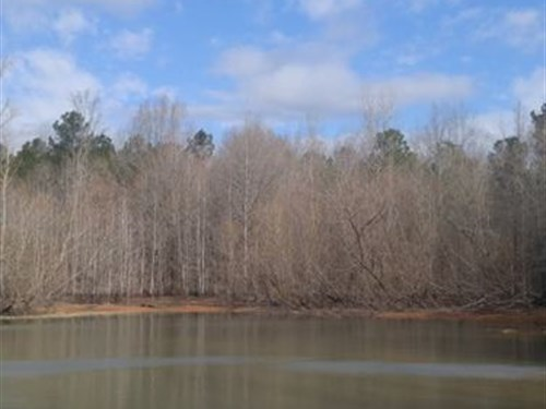 21.35 Acres - Richland County, Sc : Blythewood : Richland County : South Carolina