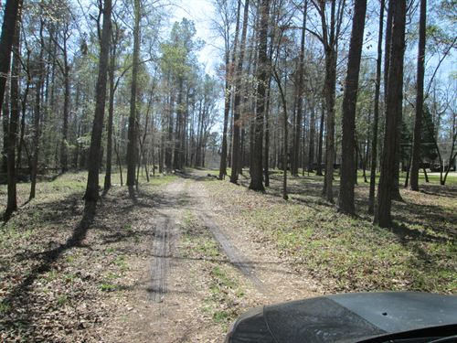 Wooded Creek Open Fields Driveway : Macon : Bibb County : Georgia