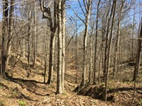 46 Ac Warren County Hunting : Vicksburg : Warren County : Mississippi