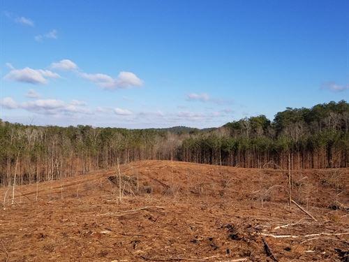 Ofelia Hills : Linville : Randolph County : Alabama