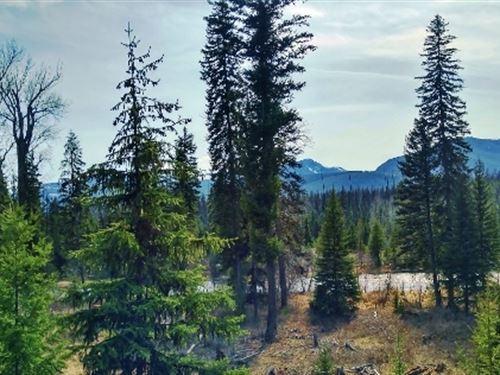 River View Acreage : Condon : Lake County : Montana