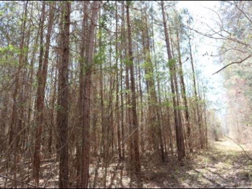 13 Acres In Leake County : Lena : Leake County : Mississippi