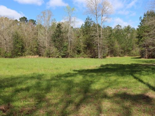 70 Acres Of Excellent Hunting In Pe : Poplarville : Pearl River County : Mississippi