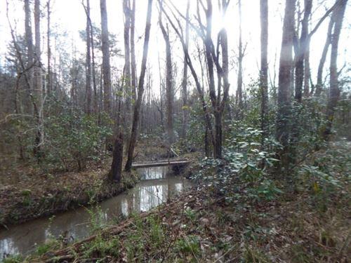 30 Acres In Jefferson Davis County : Prentiss : Jefferson Davis County : Mississippi
