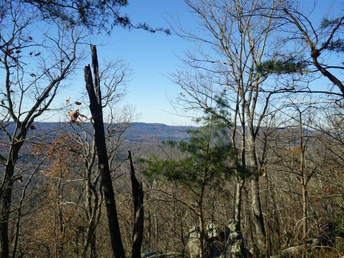 Lookout Mountain Western Bluff : Menlo : Dade County : Georgia