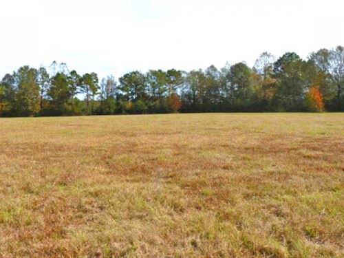 39.7 Acres Off Of Lablanc Rd : Magnolia : Pike County : Mississippi