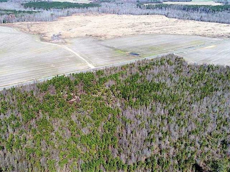 Reduced, 204 Acres of Recreationa : Walstonburg : Greene County : North Carolina