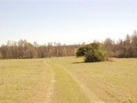 250 Acres With 10 Acre Pond Near : Shorter : Macon County : Alabama
