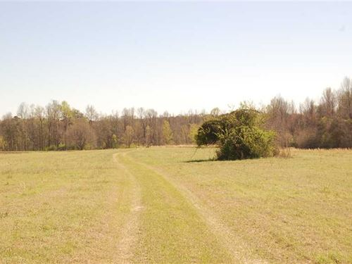 250 Acres With 10 Acre Pond Near : Shorter : Macon County : Alabama