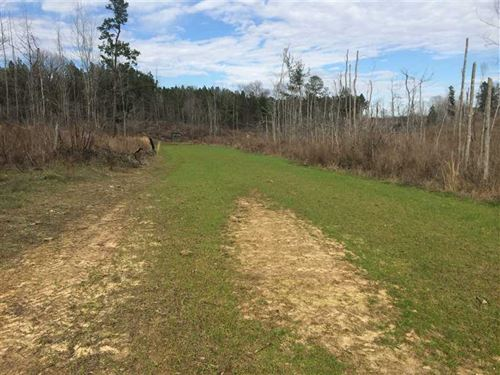 Land For Sale in Carroll County, : Carrollton : Carroll County : Mississippi