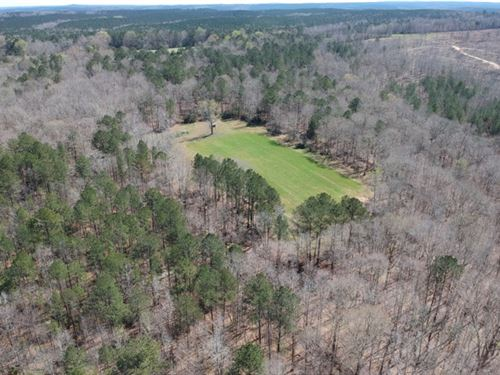 Farm With Timber, Pasture, Fencing : Talbotton : Talbot County : Georgia
