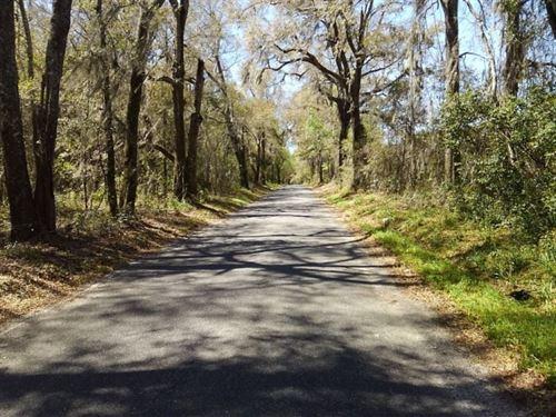 Bellamy Bridge Road : Marianna : Jackson County : Florida