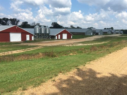 8 Broiler Houses On 20 Acres In Nes : Philadelphia : Neshoba County : Mississippi