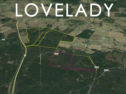 62.5 Acres Cr 4020 - Lovelady : Lovelady : Houston County : Texas
