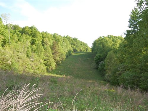 Collier Rd, 109 Acres : South Webster : Scioto County : Ohio