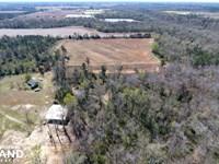 Jacks Creek Duck Club : Summerton : Clarendon County : South Carolina