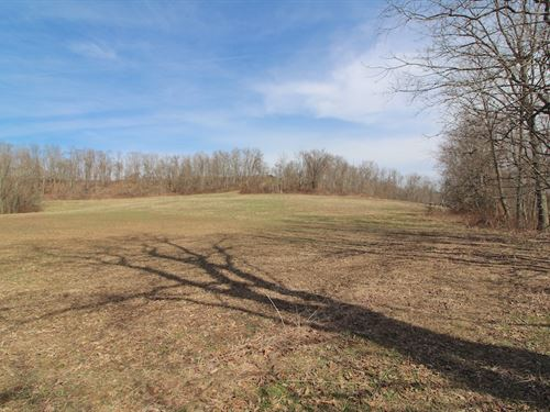 Ogilbee Rd - 25 Acres : Jacobsburg : Belmont County : Ohio