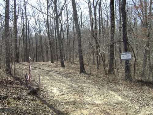 Woodland Ridge Lot 8 : Dunlap : Sequatchie County : Tennessee