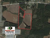 Reduced, 36 Acres of Farm And Tim : Orrum : Robeson County : North Carolina
