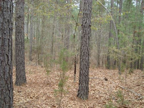 11.5 Acres - Fairfield County, Sc : Winnsboro : Fairfield County : South Carolina