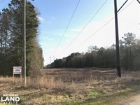 Shaw Highway 56.46 Acres : Rocky Point : Pender County : North Carolina