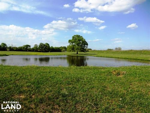 Large Oak Trees, Pond, And Improved : Normangee : Madison County : Texas