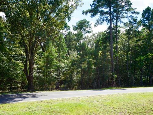 36 Acre Timberland/Development Trac : Benton : Bossier Parish : Louisiana