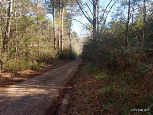 34 Ac - Pine Timberland With Home : Newton : Texas