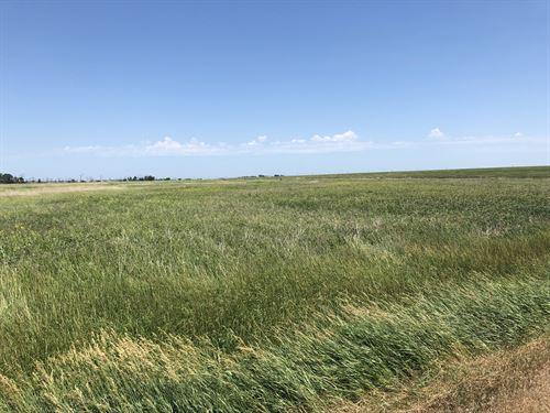 Brown County Sd Hunting Land : Groton : Brown County : South Dakota