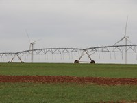 Livestock Or Crop Production : Weatherford : Custer County : Oklahoma