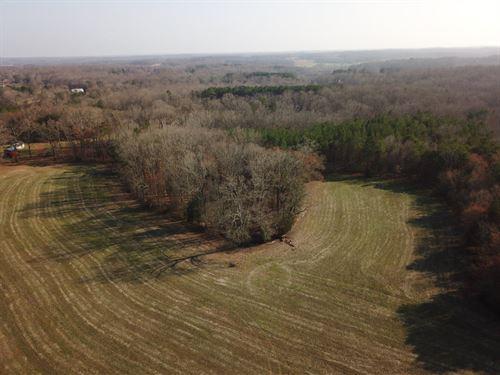 Davis Farm : Yadkinville : Yadkin County : North Carolina