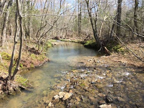 150 Acres of Mixed Open Land With : Mount Vernon : White County : Arkansas