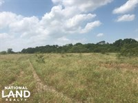 223 Acre Lake Tawakoni Property : Wills Point : Van Zandt County : Texas
