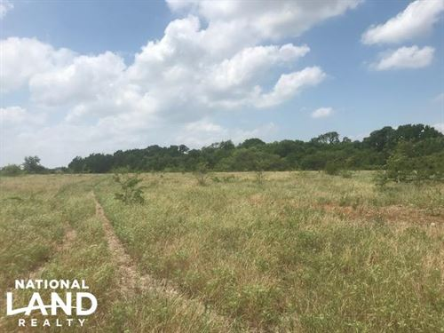 223 Acre Lake Tawakoni Property : Wills Point : Van Zandt County : Texas
