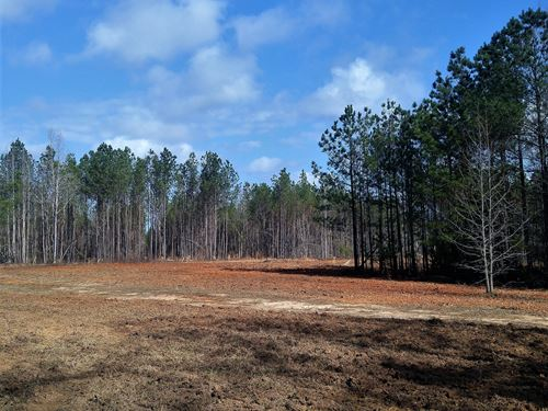154.8 Acres - Blackstock Community : Blackstock : Chester County : South Carolina