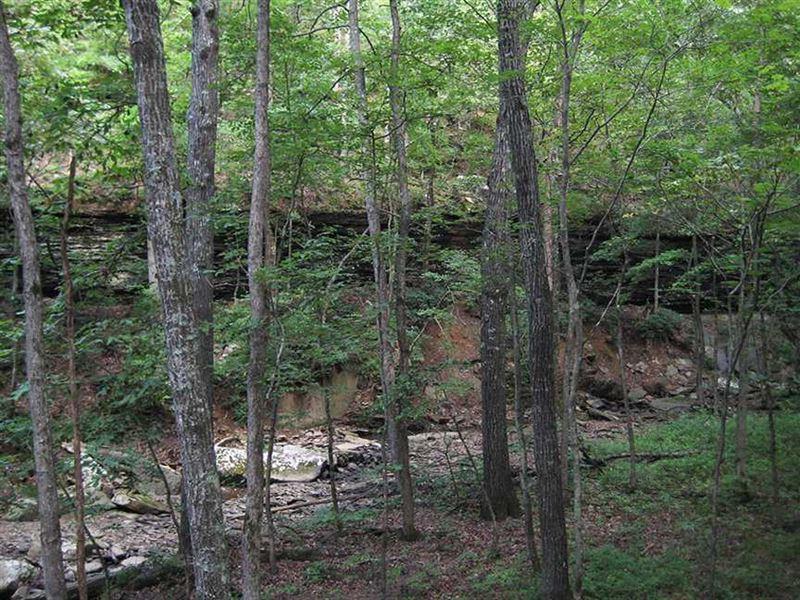 80 Acres of Recreational Property : Winslow : Washington County : Arkansas