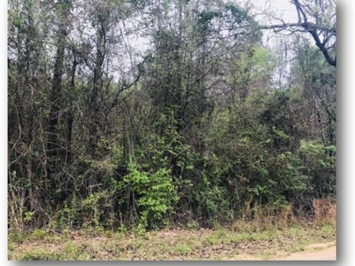 11.13 Acres In Simpson County : Pinola : Simpson County : Mississippi