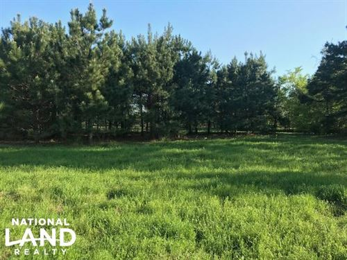 24 Acres, Pasture, Timber, Wildlife : Eustace : Van Zandt County : Texas